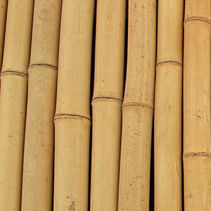 Artena Design - legno - bambù